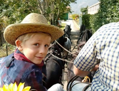Sulla carrozza, girasole e bambino